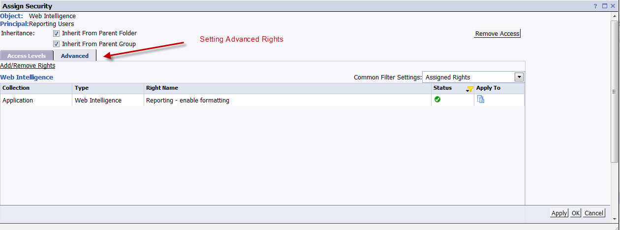WEBI - Advanced Rights for Application Component